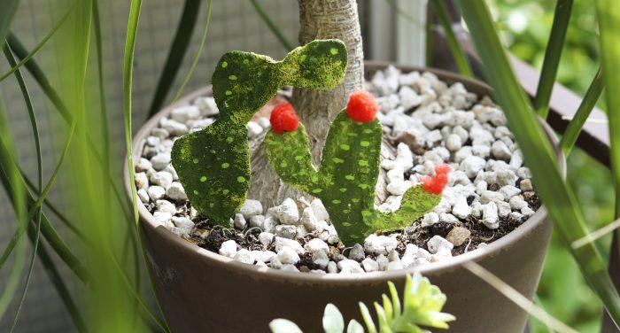 DIY | Διακοσμητικά κακτάκια για τις γλάστρες, και όχι μόνο, με γυψόγαζα!